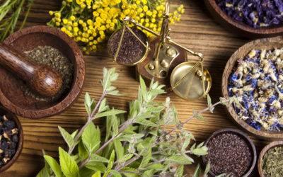Uso razionale della fitoterapia nella moderna medicina